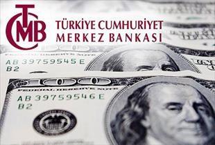MB nin döviz rezervi 3,75 milyar dolar azaldı