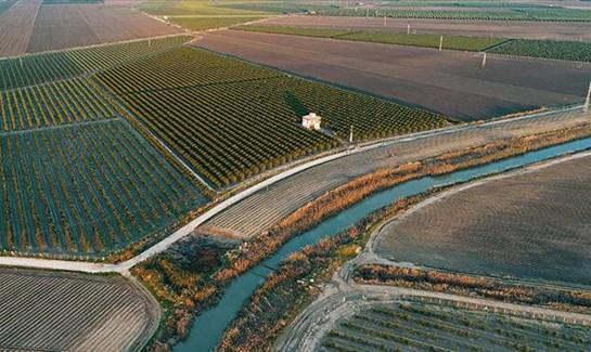 79 bin hektar ekonomiye kazandırıldı