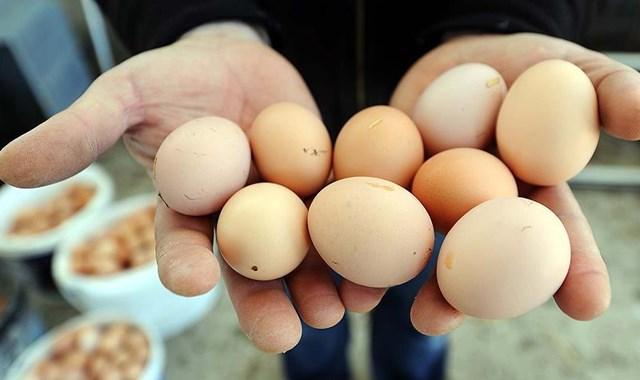 Yumurta fiyatları dibin de dibinde!