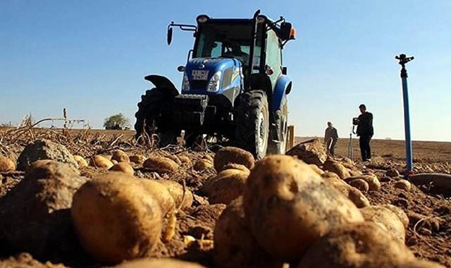 Patates ithalatı İran, Kazakistan veya Mısır dan yapılacak