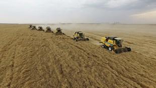 Tarım, ormancılık ve balıkçılık sektörü  aktif  büyüdü