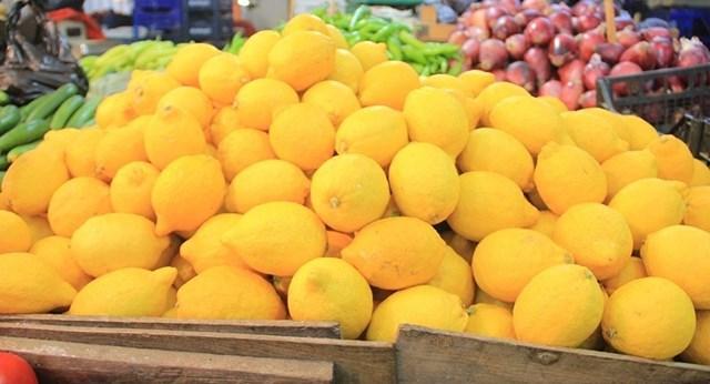 460 ton limon, 30 ton kayısı, 17 ton çilek ihtilaf ve karantinaya takıldı