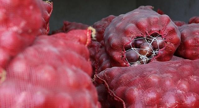 Rekabet Kurumu ndan soğan fiyatlarıyla ilgili açıklama: Takipteyiz