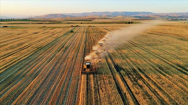 Bakan Pakdemirli den bitkisel üretim destekleri açıklaması