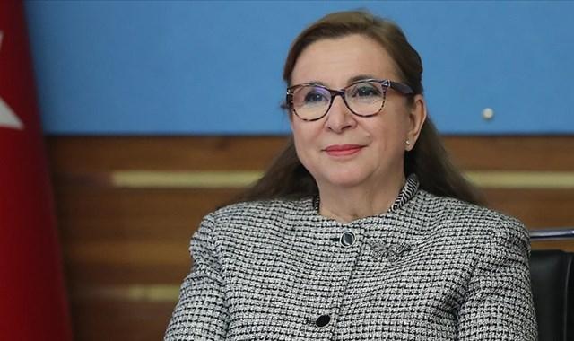 Ticaret Bakanı Pekcan: Esnaf ve sanatkarlara sağlanan destekler için başvuru süresi uzatıldı