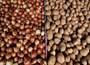 Pakdemirli den patates ve soğan dağıtımına ilişkin açıklama